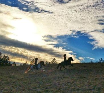 Kraftur riders in Wilder